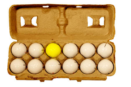 Golf balls in egg carton