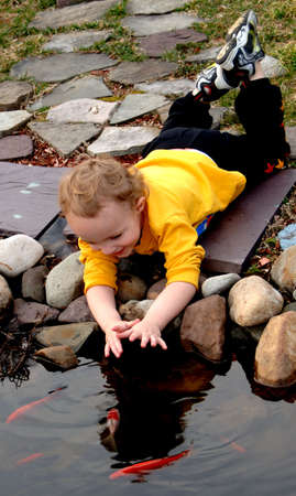 Young boy trying to pet fish