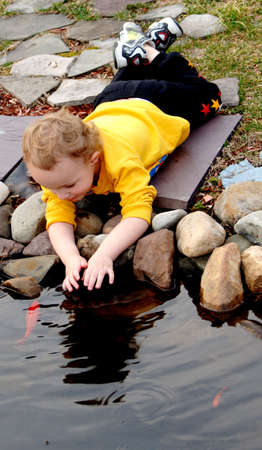 Young boy laying petting fish in backyard pond photo