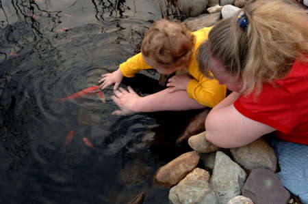 Mother and son petting fish in pond Stock Photo - 390541