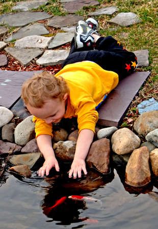 Toddler with hands in pond petting fish Stock Photo