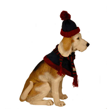 Dog statue dressed in cap, scarf, and cape for winter
