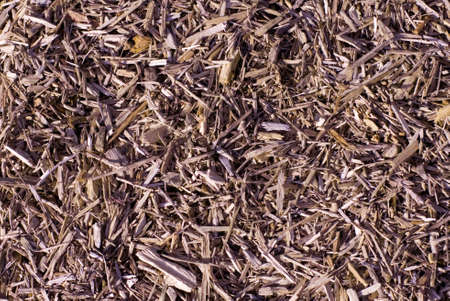 Wood mulch as textured background