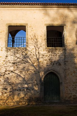 without windows: The shadow of a tree in a wall without windows Stock Photo