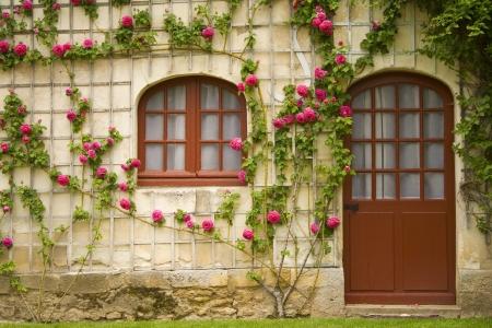 devanture: Une maison avec de belles fleurs sur le mur Banque d'images