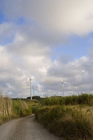 ecological power landscape at the top of the hill photo