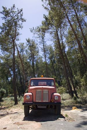 respond: an old firetruck on the forest