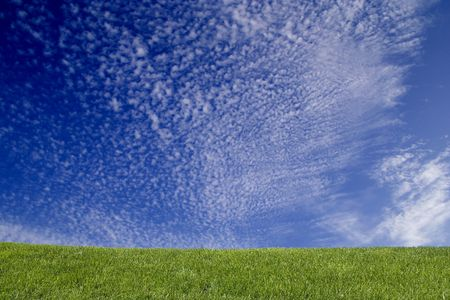 Fresh, clean summer landscape with grass and blue sky. Ideal as a background photo