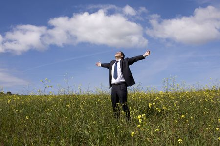 Businessman with his arms outstretched on a field with a blue sky Stock Photo