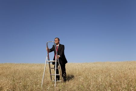 step ladder: businessman in the field climbing a step ladder