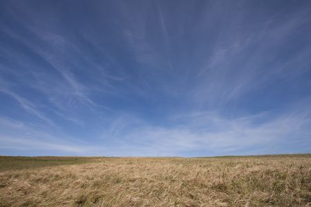empty rural field landscape afternoon Stock Photo - 5049133