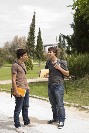 two young student talking at the school park photo