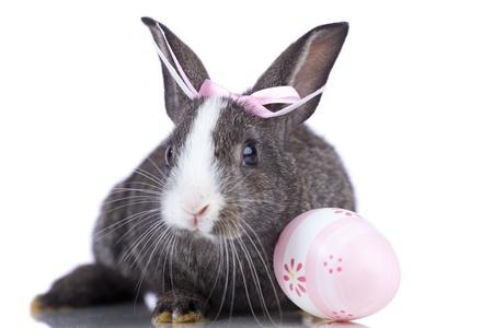 Mujer Conejo de Pascua con un huevo de pascua de color rosa (aislado en blanco) Foto de archivo