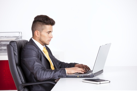 Businessman at his office working with his laptop Stock Photo - 16387332