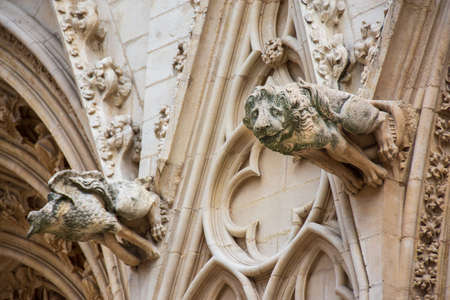 Gargoyles on the facade of the St. Jean cathedral, also known as Primatiale Saint-Jean-Baptiste-et-Saint-Étienne, Lyon, France