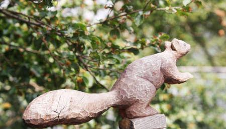 symbole: squirrel, Stock Photo