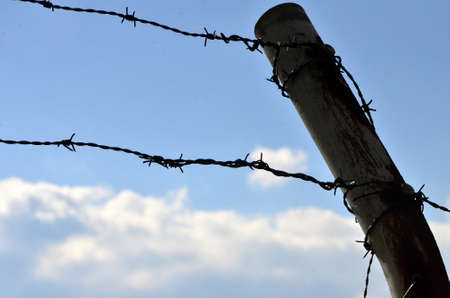 barbed wire fences: barbed wire Stock Photo