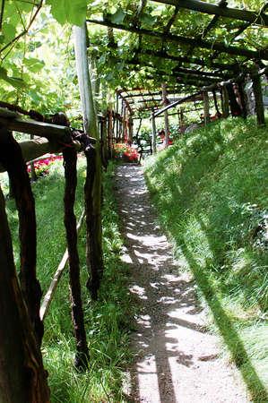 portico: Wine portico