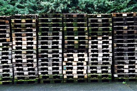 laminated: Laminated wooden pallets