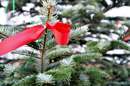 in the loop: red loop at christmas-tree Stock Photo