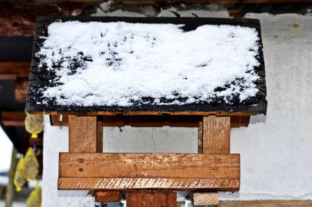 birdnest: foodsearching birds in winter