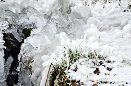 frozen creek: frozen creek