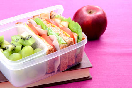Lunchbox with book and apple on pink background  photo