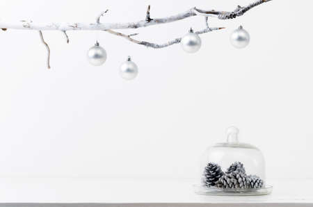Christmas decoration pinecones in silver frosty icy tone, simple minimalist elegant design Stock Photo - 15549658