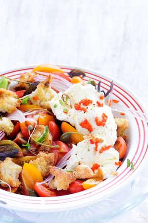 Fresh red tomatoes and mozzarella cheese salad with capers, peppers, onion, basil and croutons  Stock Photo - 15549946