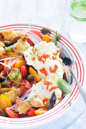 Fresh vegetable salad with tomatoes, onion, micro greens and mozzarella cheese  Stock Photo - 15555909