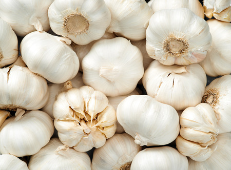 Garlic head Raw fruit and vegetable backgrounds overhead perspective, part of a set collection of healthy organic fresh produce photo
