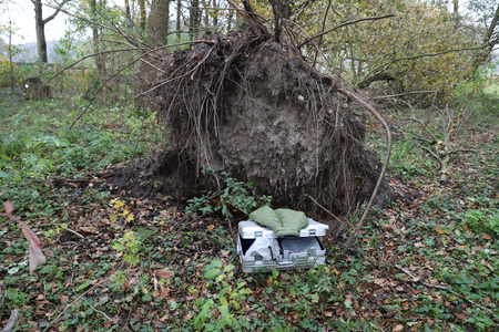 Aluminum suitcase, ransacked and in front of an uprooted oak tree. Stock Photo