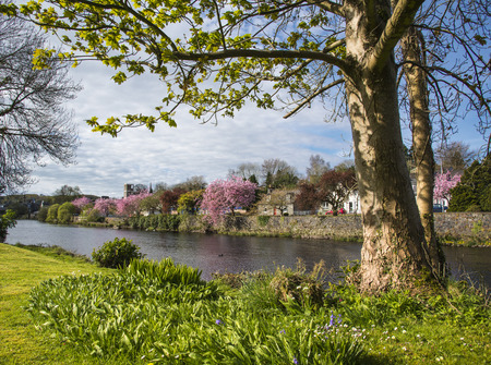 On the pretty banks of the River Cree in Newton Stewart, Dumfries and Galloway, Scotalnd. Stock Photo