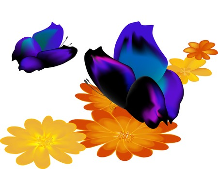 Two butterflies with half-closed wings on yellow flowers Vector