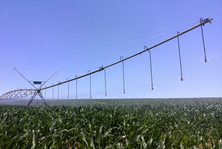 sprinkle system: Irrigarion system watering crops Stock Photo
