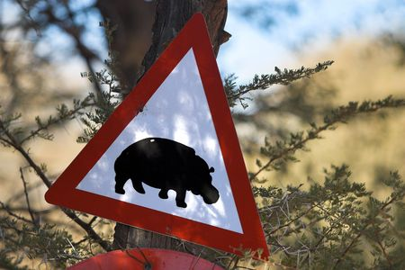Street sign showing a hippopotamus symbol. The picture was taken in Namibia, Africa. photo