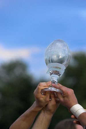 achivement: Hands reaching for a trophy after winning the championship game. Stock Photo