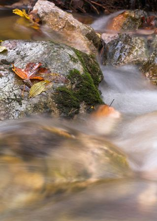 Photo of moss-covered rocks in a small stream. Stock Photo