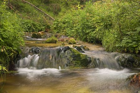 murmur: The photo shows a small waterfall in rich green vegetation. The picture was taken in Lower Austria. Stock Photo