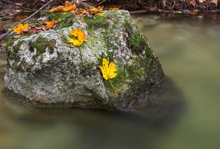 streamlet: Photo of moss-covered rocks in a small stream. Stock Photo