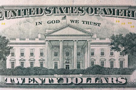 in god we trust: Extreme macro shot of a twenty dollar bill.