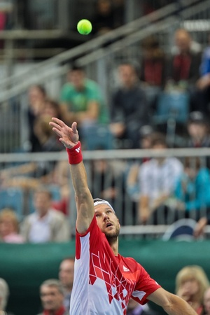 WIENER NEUSTADT, AUSTRIA - FEBRUARY 10 Juergen Melzer (Austria) beats Igor Kunizin (Russia) in a five set match during the Davis Cup event on February 10, 2012 in Wiener Neustadt, Austria. Stock Photo - 13160805