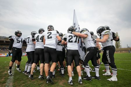 afl: GRAZ, AUSTRIA - APRIL 04, 2014: The team of the Swarco Raiders huddles up before an AFL football game.