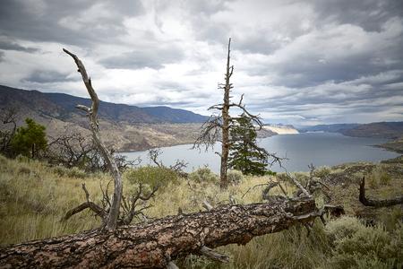 scenery panorama beautiful cloudy sky water lake tree