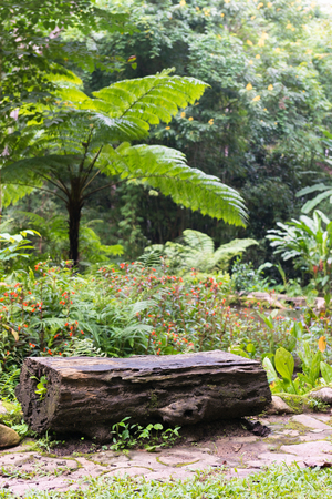 timber bench seat: Log  Timber chair in green garden.