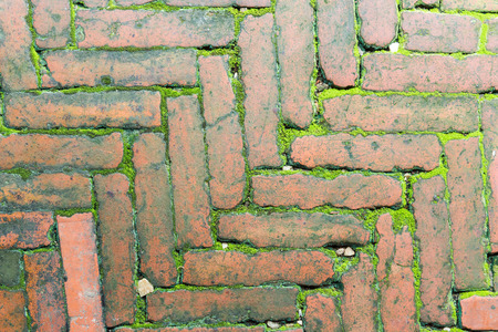 to interfere: Old bricks are arranged into beautiful patterns. Interfere with green moss.