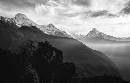 Blick auf den Himalaya-Gipfel der 6993 ms. Montieren Machhapuchhare-Fish Tail und Annapurna South, Nepal. Schwarz und weiß. Standard-Bild - 60100796