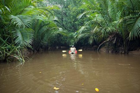 Kajakken door weelderige groene jungle en wilde mangrovemoeras bij Klong Sung Nae, Little Amazon, Phang Nga - Thailand