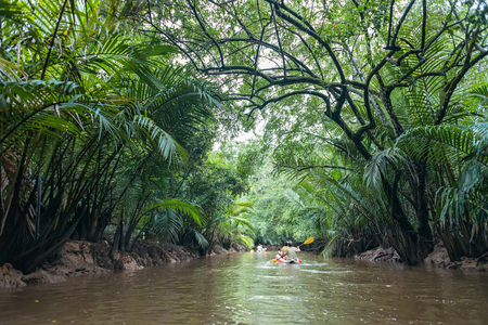 Kayaking through lush green jungle and wild mangrove swamp at Klong Sung Nae, Little Amazon, Phang Nga - Thailand Standard-Bild