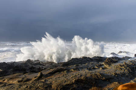 Swells of a Decade Crashing Against the Cliffs of Shore Acres State Park, Coos Bay Oregon Stock Photo